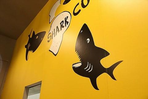 可爱点儿的鲨鱼简笔画